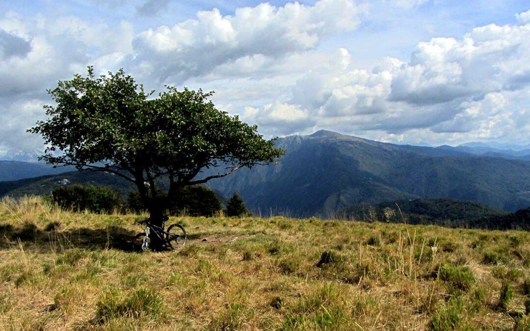 Itinerario MTB – Monte Joanaz e malghe di Porzus