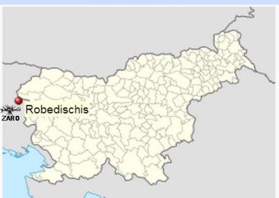 Robedischis in Slovenia