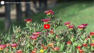 Agriturismo Zaro New Video