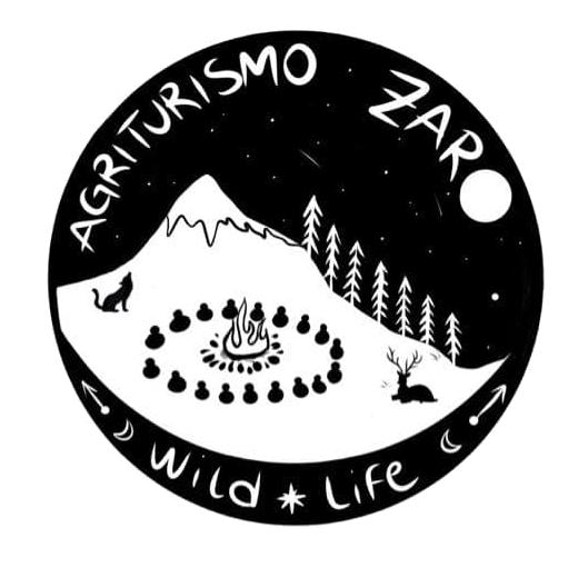 Logo Zaro by Alesjah